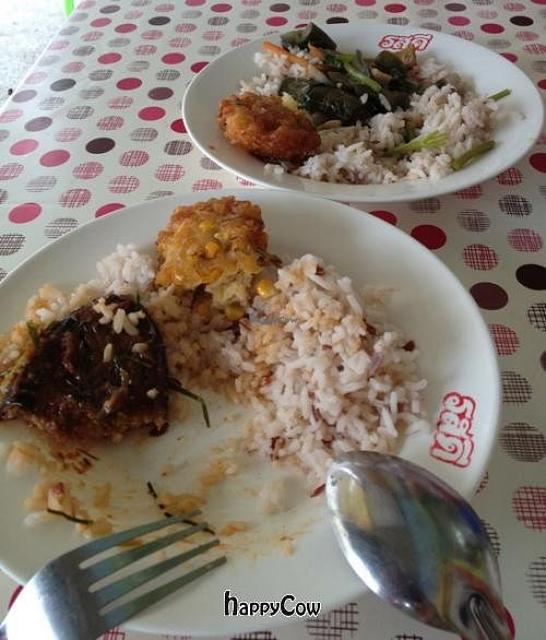 """Photo of Youta Vegetarian Food Stall  by <a href=""""/members/profile/ArtinHeaven"""">ArtinHeaven</a> <br/>Lunch: Imitation Fishcakes, Corn Fritters, Thai veggie Curry, Brown Rice <br/> September 30, 2012  - <a href='/contact/abuse/image/34469/38585'>Report</a>"""