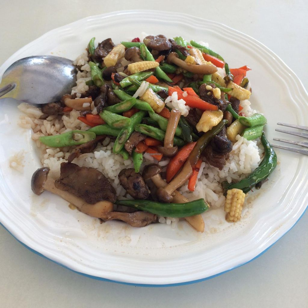 """Photo of Youta Vegetarian Food Stall  by <a href=""""/members/profile/Annawarnerbramen"""">Annawarnerbramen</a> <br/>Delicous Basil Fried Rice for 35 baht <br/> March 5, 2015  - <a href='/contact/abuse/image/34469/94961'>Report</a>"""