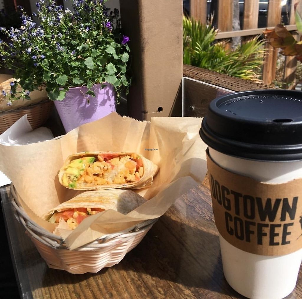 "Photo of Dogtown Coffee  by <a href=""/members/profile/catalinacarbajal"">catalinacarbajal</a> <br/>Vegan wrap & coconut latte <br/> May 9, 2017  - <a href='/contact/abuse/image/34506/257492'>Report</a>"