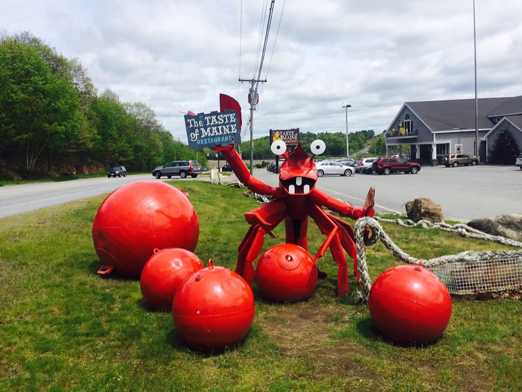 "Photo of Taste of Maine  by <a href=""/members/profile/Bgeezy"">Bgeezy</a> <br/>roadside attraction lobster statue <br/> May 28, 2017  - <a href='/contact/abuse/image/34562/263377'>Report</a>"
