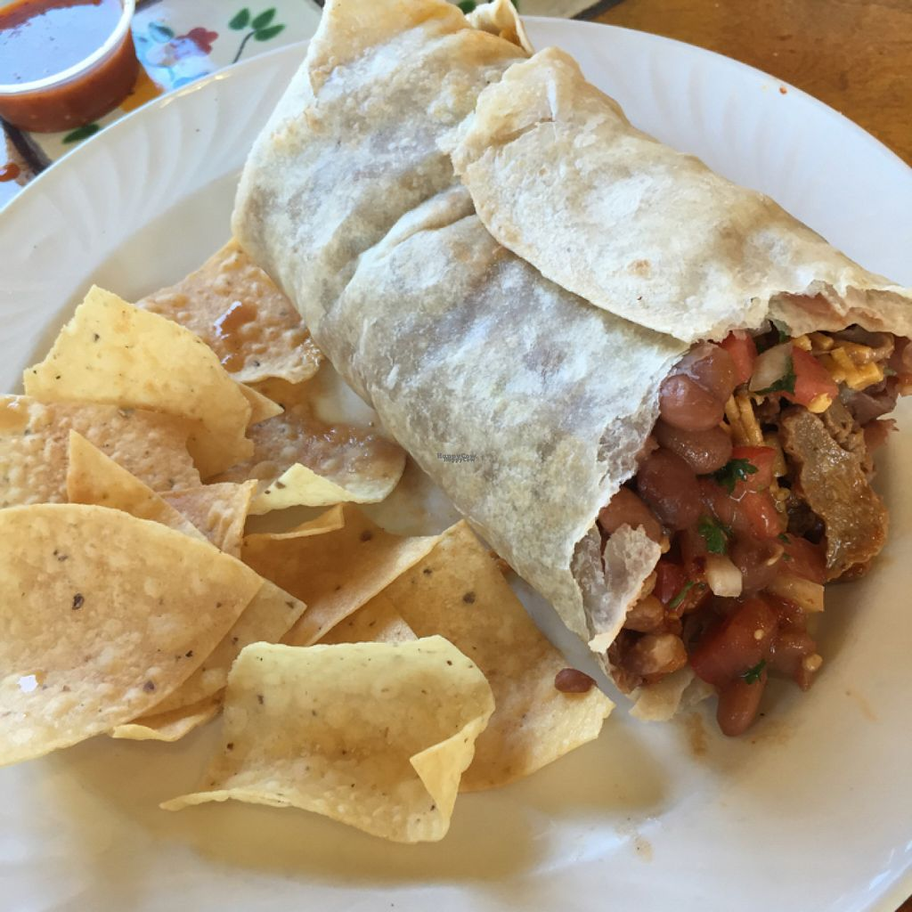 "Photo of Tacos Cancun  by <a href=""/members/profile/NavenePKoperweis"">NavenePKoperweis</a> <br/>Asada burrito vegan  <br/> August 6, 2016  - <a href='/contact/abuse/image/34606/166397'>Report</a>"