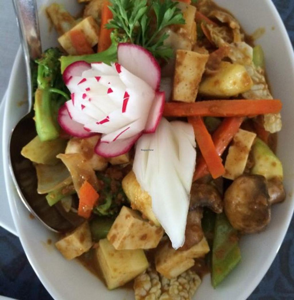 """Photo of Thai Onzon  by <a href=""""/members/profile/TLC%20Veg."""">TLC Veg.</a> <br/>yummy peanut sauce <br/> June 3, 2014  - <a href='/contact/abuse/image/34634/71332'>Report</a>"""
