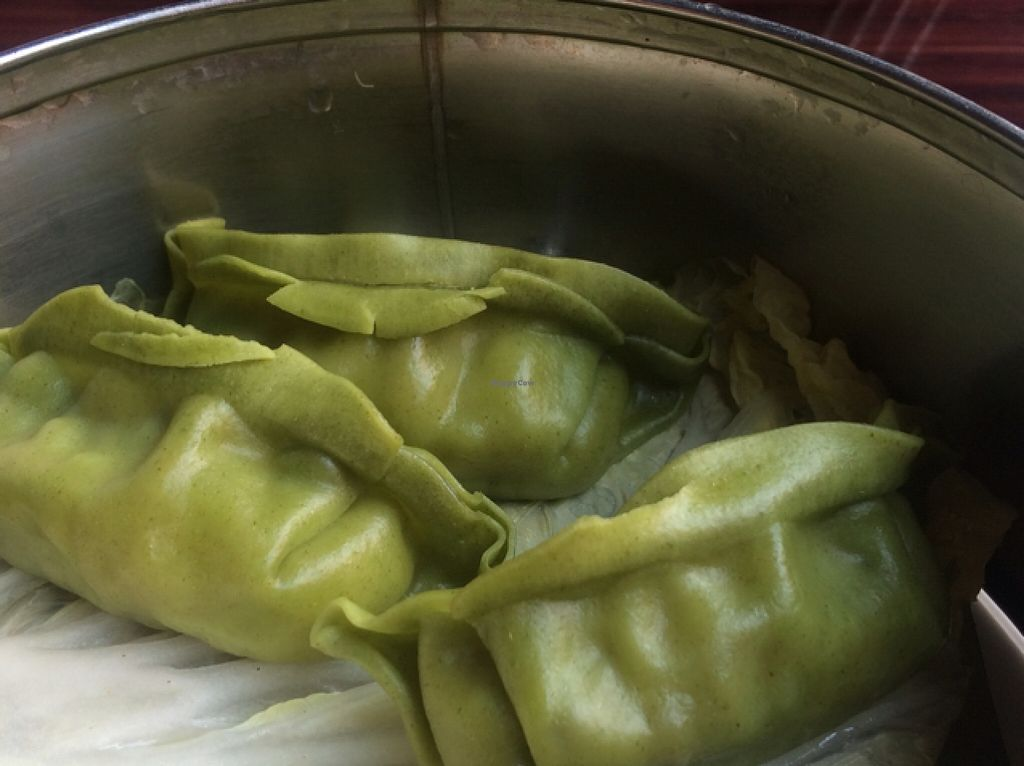 """Photo of Veggie Fun  by <a href=""""/members/profile/Stacie99"""">Stacie99</a> <br/>steamed dumplings  <br/> November 10, 2015  - <a href='/contact/abuse/image/34687/124523'>Report</a>"""