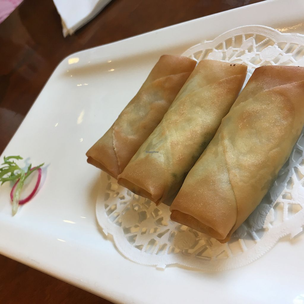 "Photo of Vegetarian Life Style - Zao Zi Shu - JiangNing  by <a href=""/members/profile/SuBravo"">SuBravo</a> <br/>spring rolls <br/> July 25, 2017  - <a href='/contact/abuse/image/3473/284740'>Report</a>"