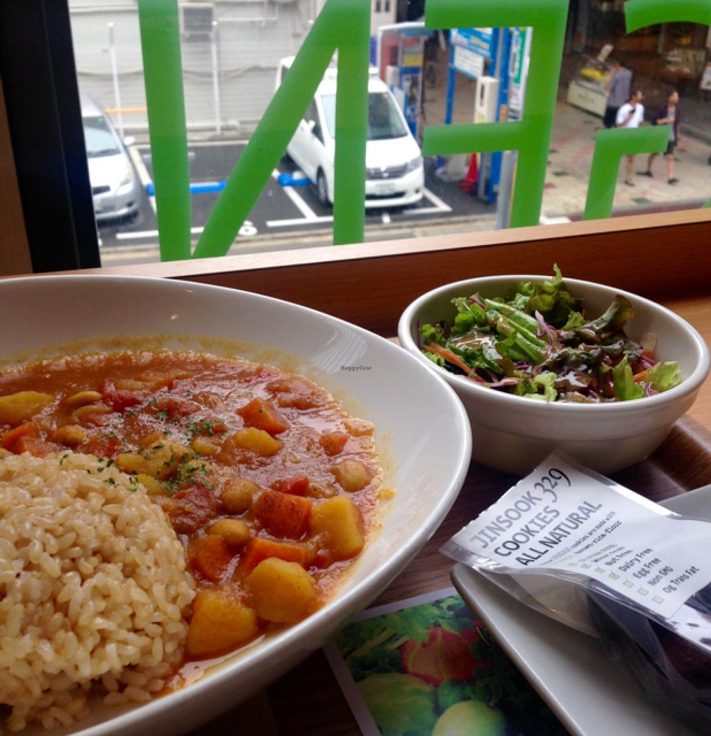 """Photo of Genmai Cafe  by <a href=""""/members/profile/EmmaCebuliak"""">EmmaCebuliak</a> <br/>Vegetable curry with salad, and take - away cocoa cookies for later <br/> June 30, 2016  - <a href='/contact/abuse/image/34757/156940'>Report</a>"""