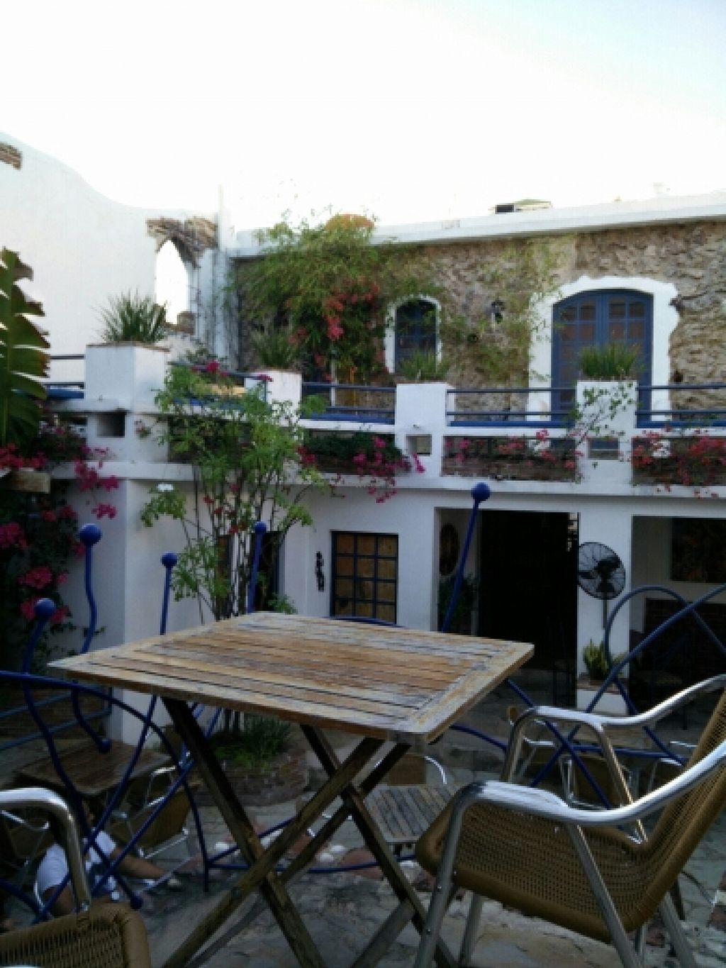 """Photo of El Rey del Falafel  by <a href=""""/members/profile/VeggieLausi"""">VeggieLausi</a> <br/>Beautiful garden to relax <br/> February 13, 2016  - <a href='/contact/abuse/image/34775/136134'>Report</a>"""