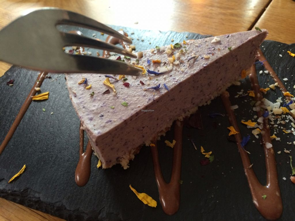 """Photo of Gratitude Restaurant  by <a href=""""/members/profile/Beaa"""">Beaa</a> <br/>blueberry cheesecake - mine! :) <br/> March 26, 2016  - <a href='/contact/abuse/image/34817/141372'>Report</a>"""