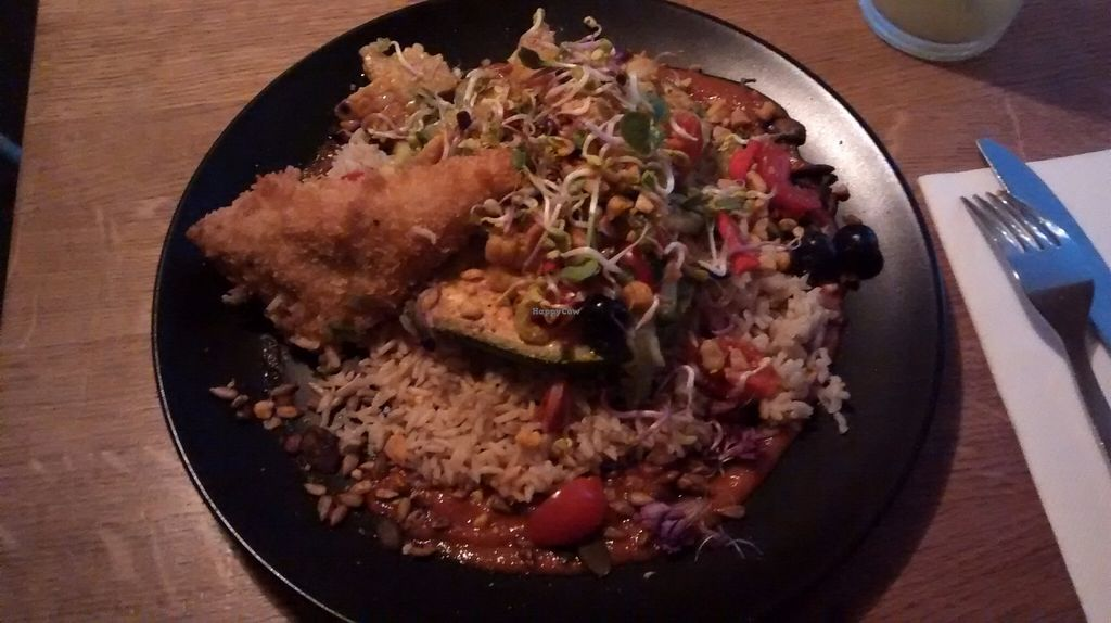 """Photo of Gratitude Restaurant  by <a href=""""/members/profile/Ricardo"""">Ricardo</a> <br/>Grilled Avocado w/ Tempeh, Rice and Salad w/blueberries <br/> June 25, 2016  - <a href='/contact/abuse/image/34817/155988'>Report</a>"""