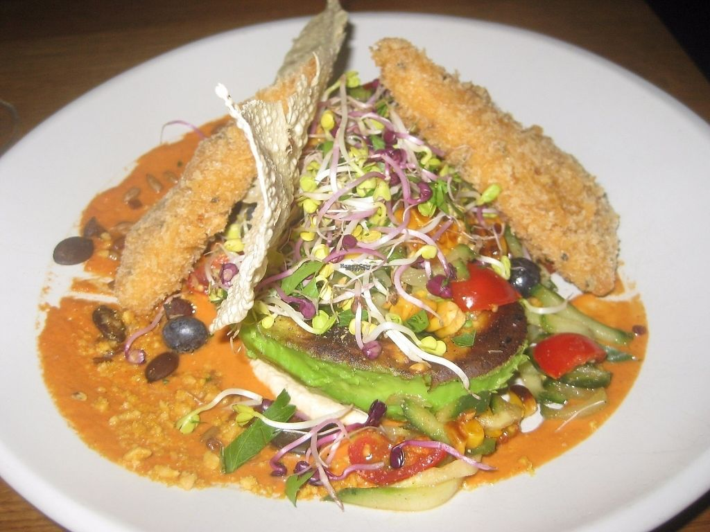 """Photo of Gratitude Restaurant  by <a href=""""/members/profile/jennyc32"""">jennyc32</a> <br/>Grilled avocado dish <br/> April 16, 2017  - <a href='/contact/abuse/image/34817/248987'>Report</a>"""