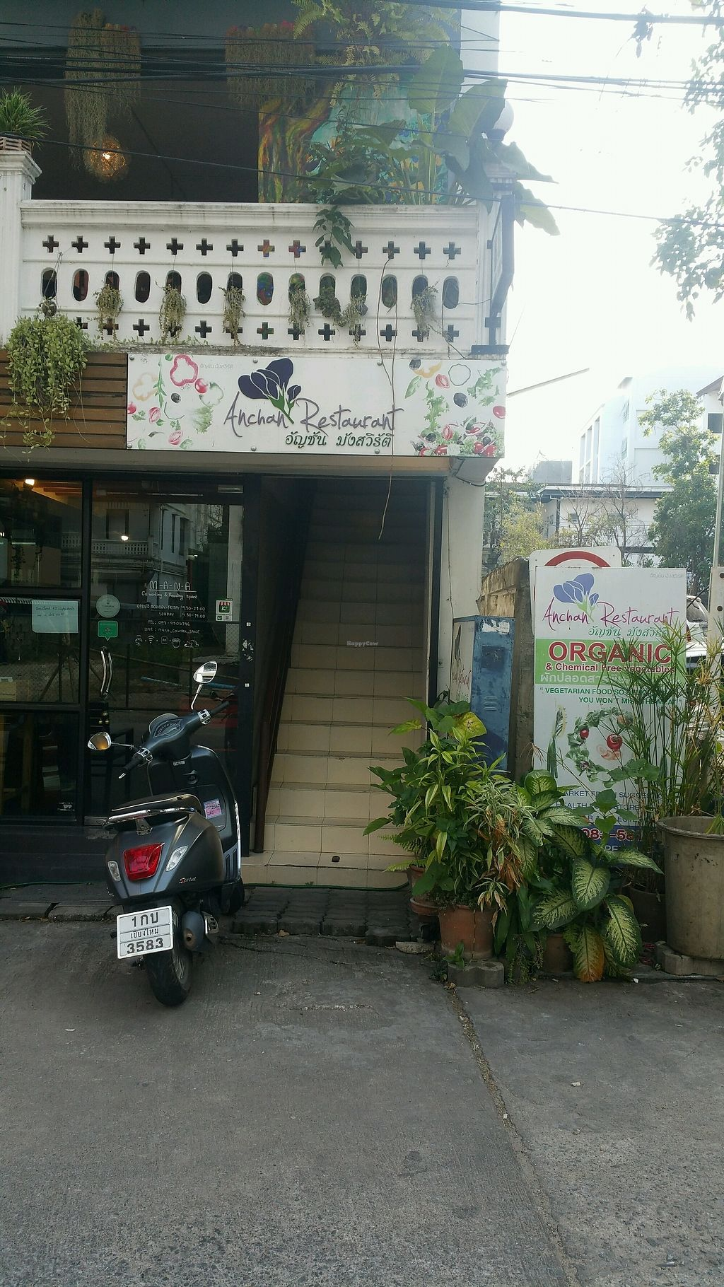 "Photo of Anchan Vegetarian Restaurant  by <a href=""/members/profile/Mike%20Munsie"">Mike Munsie</a> <br/>street front <br/> February 4, 2018  - <a href='/contact/abuse/image/34920/354717'>Report</a>"