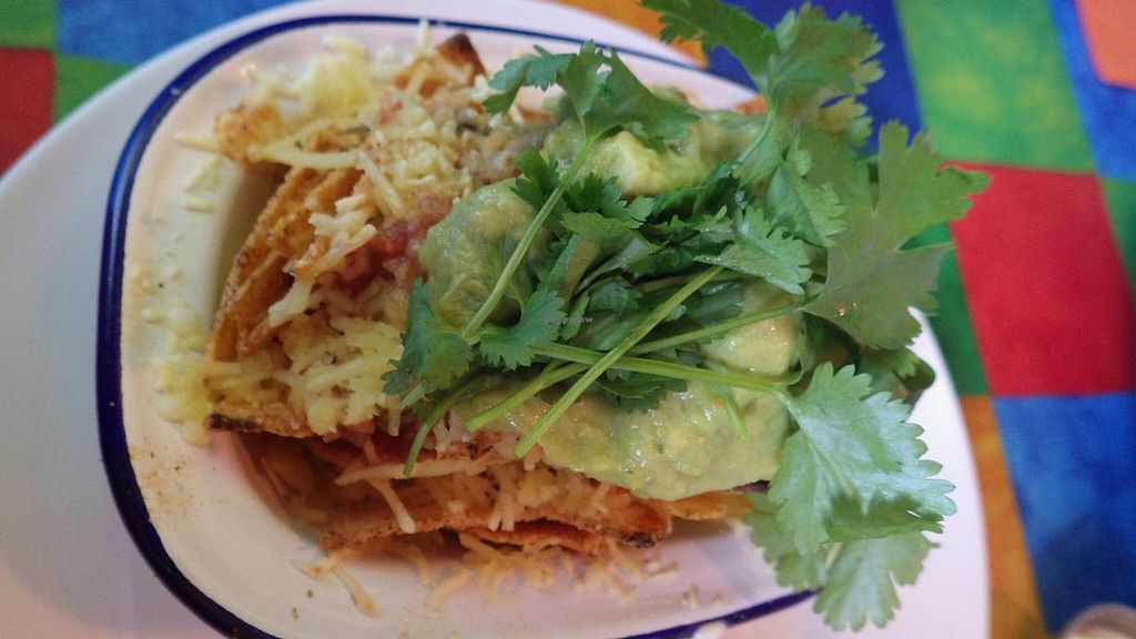 """Photo of The Mex  by <a href=""""/members/profile/deadpledge"""">deadpledge</a> <br/>Vegan Nachos <br/> June 14, 2015  - <a href='/contact/abuse/image/35026/105877'>Report</a>"""