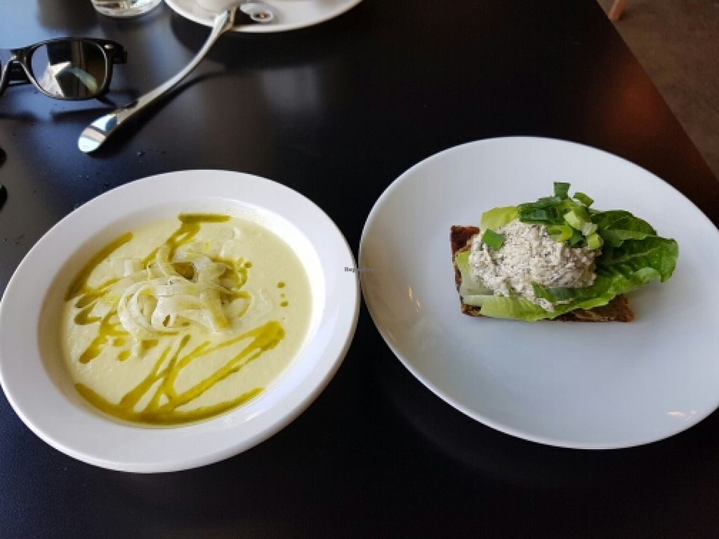 "Photo of CLOSED: Greens and Vines  by <a href=""/members/profile/hooligansharma"">hooligansharma</a> <br/>Zucchini bisque and not tuna on onion bread  <br/> March 29, 2016  - <a href='/contact/abuse/image/35034/141822'>Report</a>"