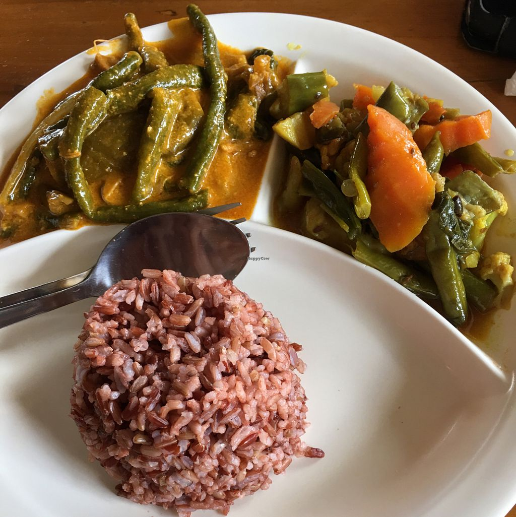 """Photo of Blissful Belly Vegetarian Cuisine  by <a href=""""/members/profile/oatsncinnamon"""">oatsncinnamon</a> <br/>  <br/> June 28, 2016  - <a href='/contact/abuse/image/3504/156540'>Report</a>"""