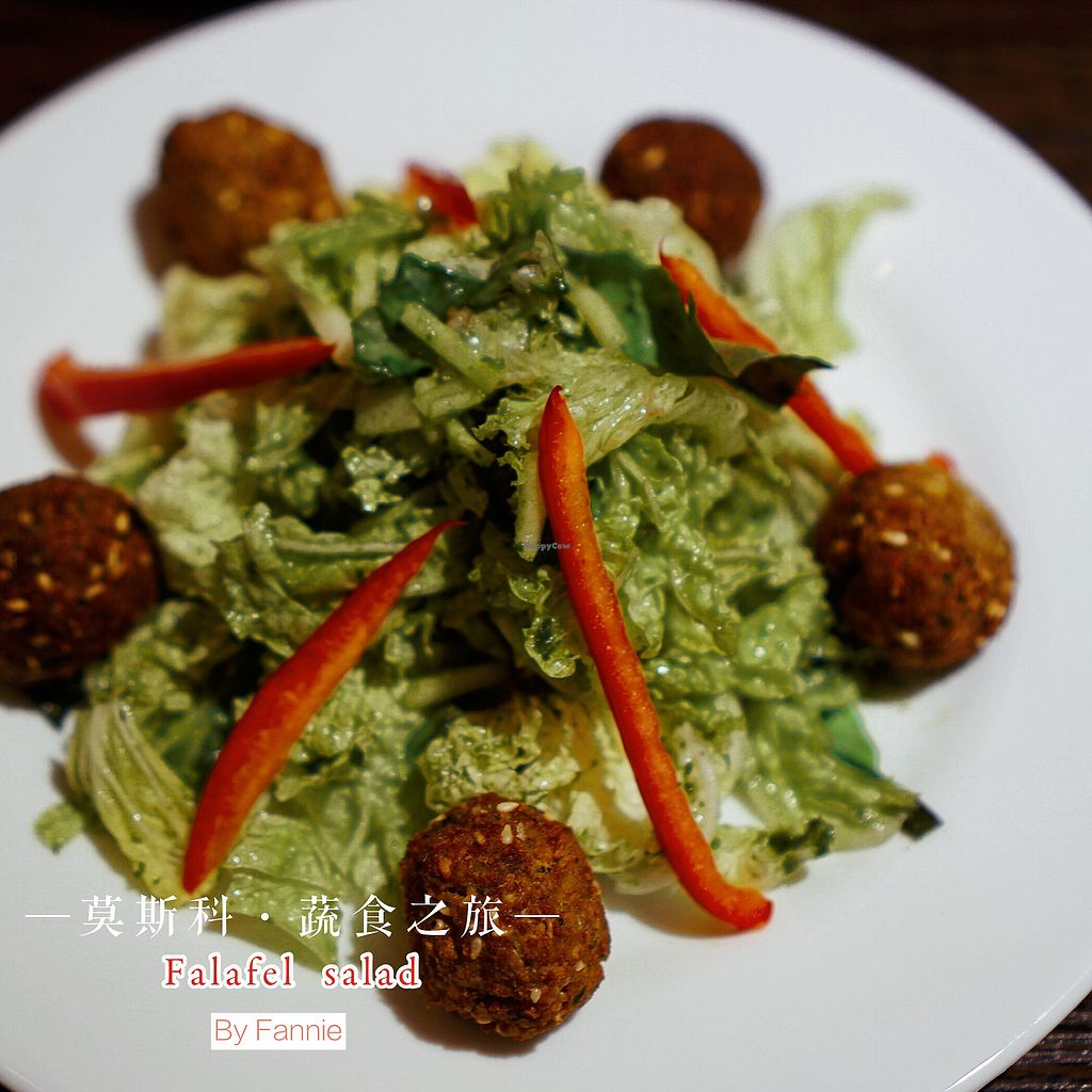 "Photo of Avocado Cafe - Tverskaja  by <a href=""/members/profile/Fannieliao"">Fannieliao</a> <br/>Vegan falafel salad <br/> July 22, 2017  - <a href='/contact/abuse/image/35195/283163'>Report</a>"