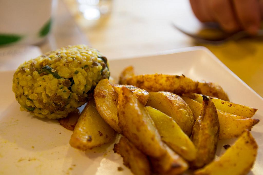 "Photo of Freschette BioBistrot and Market  by <a href=""/members/profile/SVEggieSI"">SVEggieSI</a> <br/>Curry-rice ball with lentils and courgette, supplemented by potato wedges <br/> November 17, 2014  - <a href='/contact/abuse/image/35210/85908'>Report</a>"