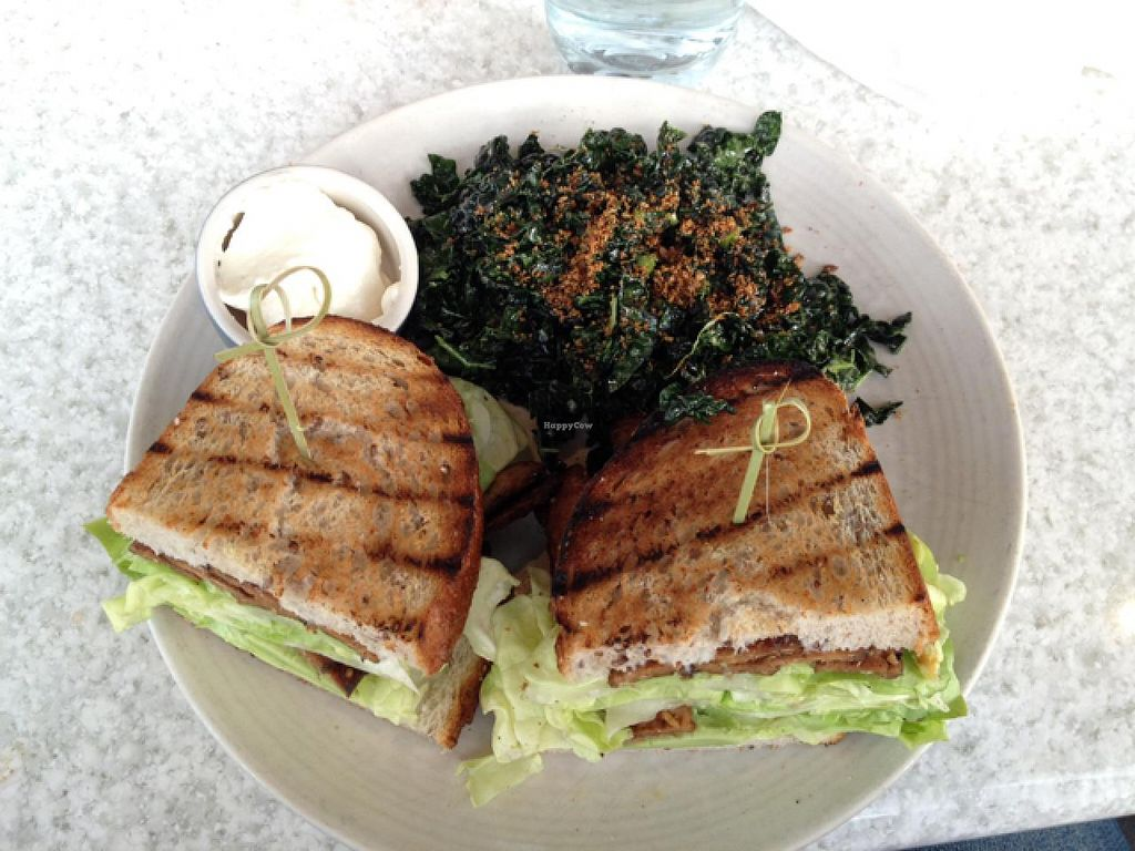 "Photo of True Foods Kitchen  by <a href=""/members/profile/Tigra220"">Tigra220</a> <br/>TLT with a side kale salad  <br/> January 11, 2015  - <a href='/contact/abuse/image/35228/90161'>Report</a>"
