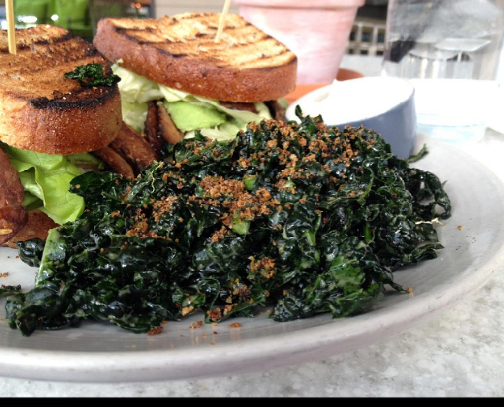 "Photo of True Foods Kitchen  by <a href=""/members/profile/Tigra220"">Tigra220</a> <br/>Kale salad close-up  <br/> January 11, 2015  - <a href='/contact/abuse/image/35228/90163'>Report</a>"