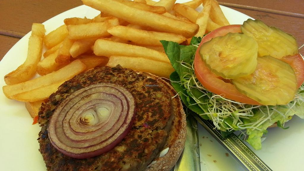 """Photo of CLOSED: The Vegan Joint - Hollywood  by <a href=""""/members/profile/eric"""">eric</a> <br/>lentil burger <br/> May 27, 2015  - <a href='/contact/abuse/image/35252/103602'>Report</a>"""