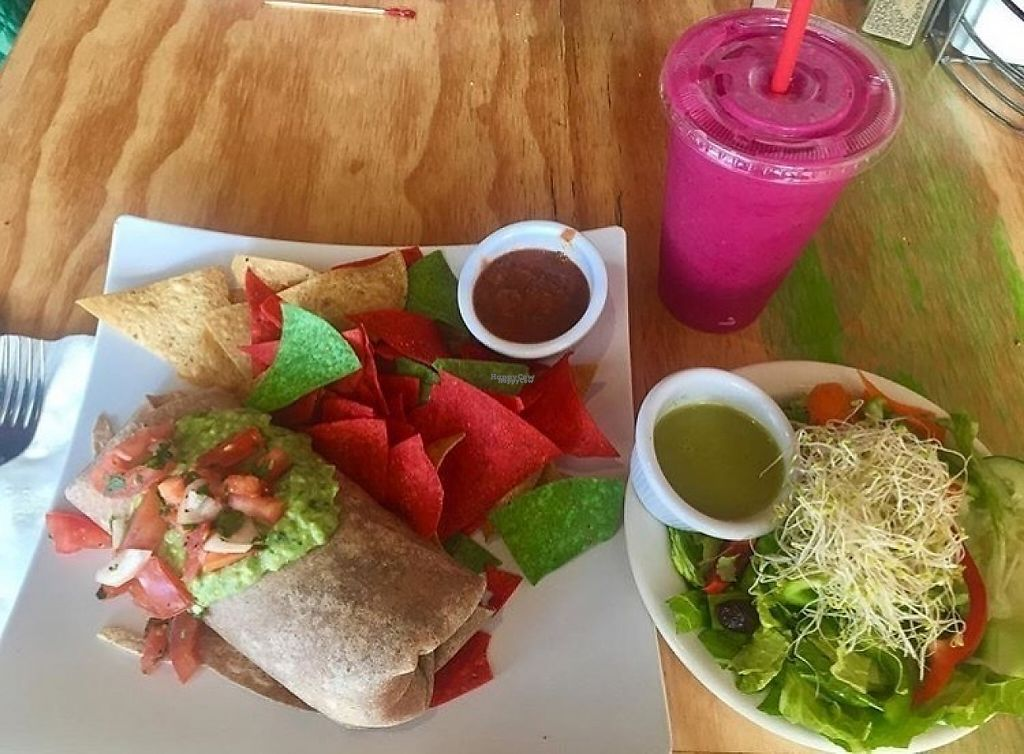 """Photo of Swami's Cafe  by <a href=""""/members/profile/oceansidevegan"""">oceansidevegan</a> <br/>Black Bean and Brown Rice Burrito, Pitaya Smoothie. 10/10 would recommend that smoothie. Burrito needs some peppers and onions inside. Was a good size/very filling though! <br/> March 10, 2017  - <a href='/contact/abuse/image/35259/234922'>Report</a>"""