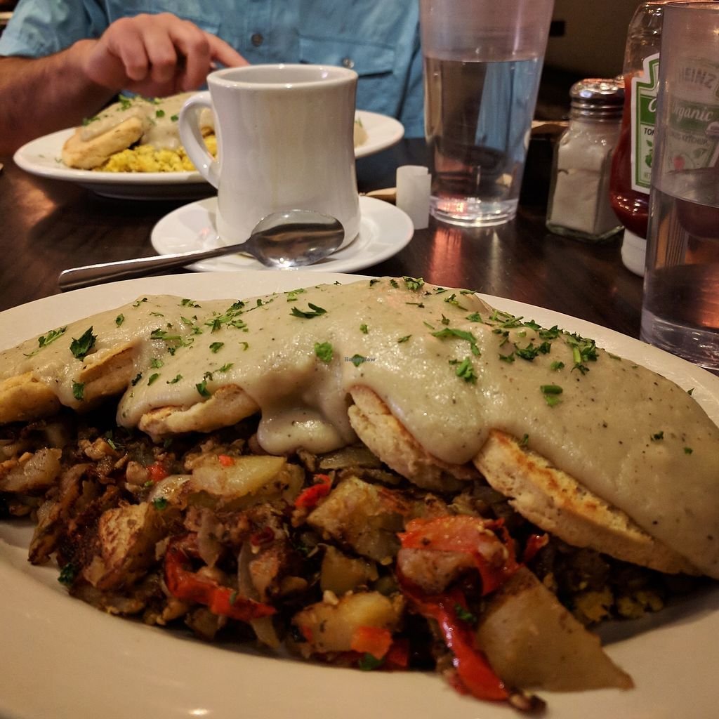 """Photo of The Chicago Diner - Logan Square  by <a href=""""/members/profile/makemenervous"""">makemenervous</a> <br/>Tempeh Hash, Scrambled Tofu, Biscuits & Gravy <br/> August 22, 2017  - <a href='/contact/abuse/image/35433/295974'>Report</a>"""