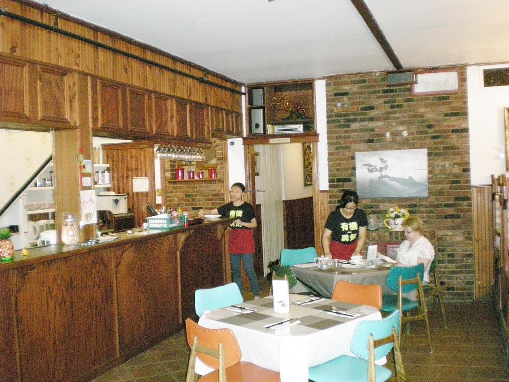 """Photo of Splendid Essence  by <a href=""""/members/profile/Kirsh"""">Kirsh</a> <br/>Splendid Essence Restaurant - Interior <br/> September 9, 2014  - <a href='/contact/abuse/image/35442/79441'>Report</a>"""