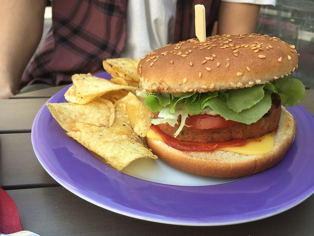 """Photo of Savory  by <a href=""""/members/profile/VeganVirginia"""">VeganVirginia</a> <br/>Vegan cheeseburger  <br/> June 23, 2017  - <a href='/contact/abuse/image/35446/272650'>Report</a>"""