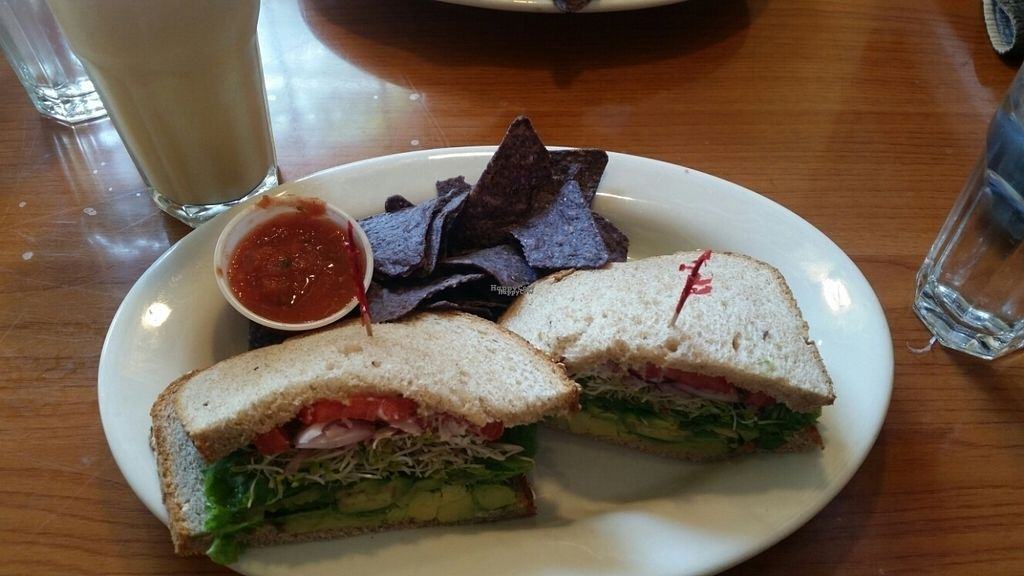 """Photo of The Natural Cafe - State St  by <a href=""""/members/profile/Zazana"""">Zazana</a> <br/>delicious sandwich <br/> September 29, 2016  - <a href='/contact/abuse/image/3549/178478'>Report</a>"""