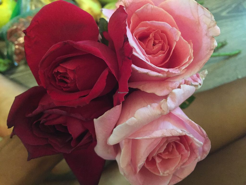 """Photo of Upcountry Farmer's Market  by <a href=""""/members/profile/TiffanyJanay"""">TiffanyJanay</a> <br/>organic roses perfect foraging edible rose water  <br/> June 26, 2017  - <a href='/contact/abuse/image/35605/273549'>Report</a>"""