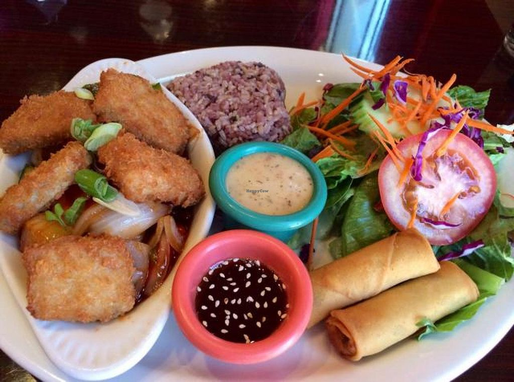 """Photo of Thai Vegan - Nob Hill  by <a href=""""/members/profile/Evolving"""">Evolving</a> <br/>nugget lunch combo <br/> June 26, 2014  - <a href='/contact/abuse/image/35625/72852'>Report</a>"""