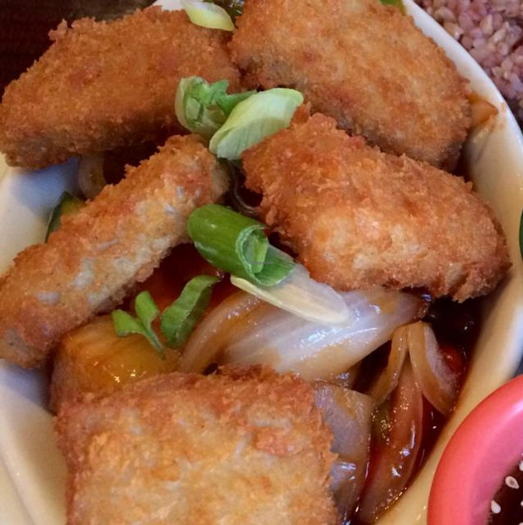 """Photo of Thai Vegan - Nob Hill  by <a href=""""/members/profile/Evolving"""">Evolving</a> <br/>nuggets  <br/> June 26, 2014  - <a href='/contact/abuse/image/35625/72856'>Report</a>"""