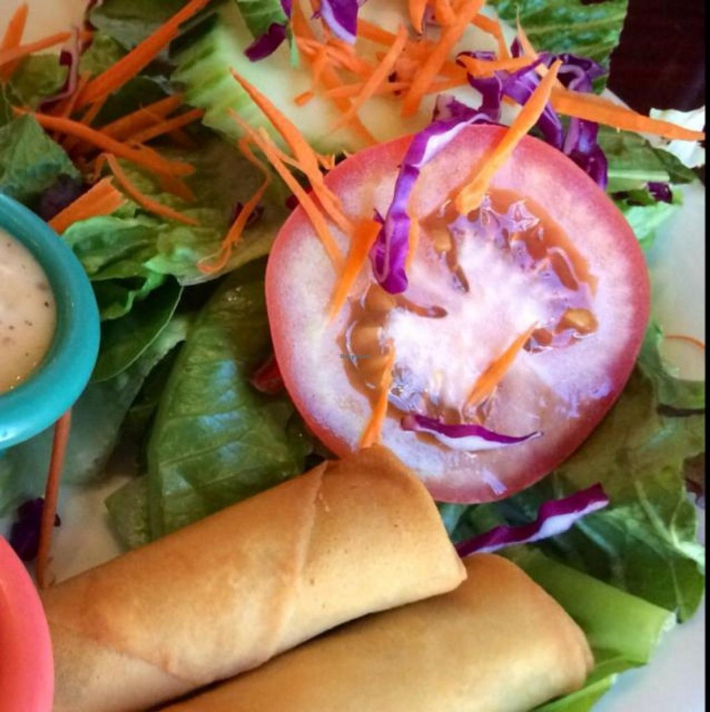 """Photo of Thai Vegan - Nob Hill  by <a href=""""/members/profile/Evolving"""">Evolving</a> <br/>spring rolls and salad  <br/> June 26, 2014  - <a href='/contact/abuse/image/35625/72857'>Report</a>"""