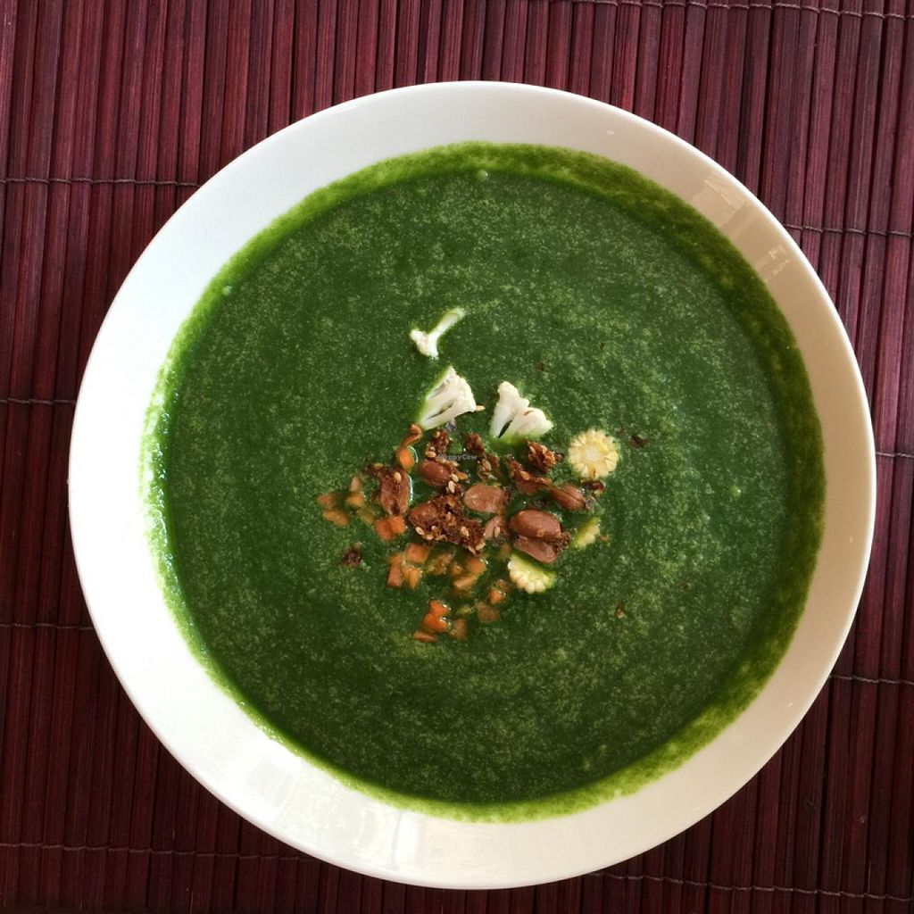 """Photo of L'Elephant Vert  by <a href=""""/members/profile/earthville"""">earthville</a> <br/>chlorophyll soup <br/> February 28, 2015  - <a href='/contact/abuse/image/35846/94351'>Report</a>"""