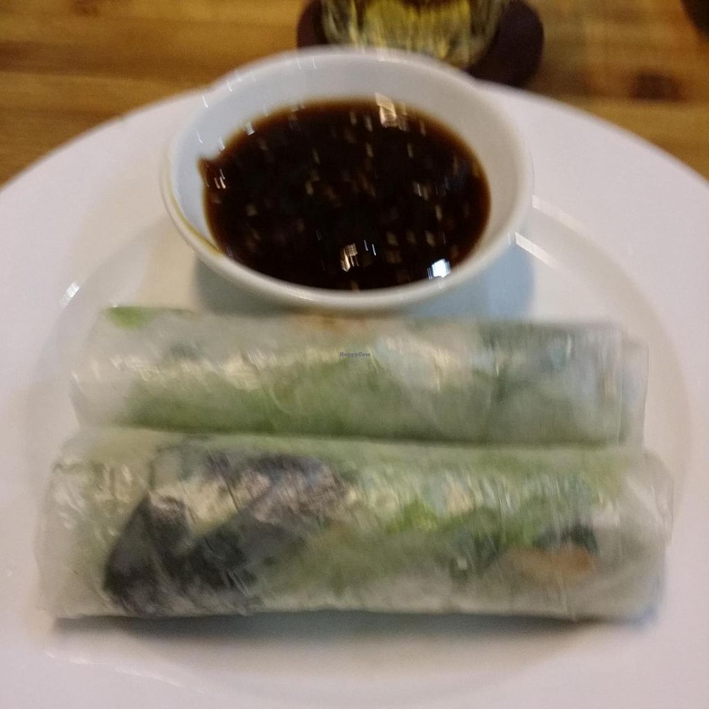 """Photo of Huong Sen Vegetarian - Bui Vien St  by <a href=""""/members/profile/Jeane"""">Jeane</a> <br/>Spring rolls (10.000 vnd each) <br/> May 11, 2014  - <a href='/contact/abuse/image/35854/69811'>Report</a>"""