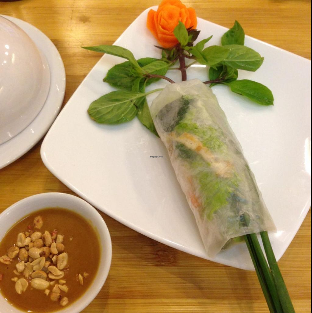 """Photo of Huong Sen Vegetarian - Bui Vien St  by <a href=""""/members/profile/VeganBiker"""">VeganBiker</a> <br/>Spring Roll <br/> January 26, 2015  - <a href='/contact/abuse/image/35854/91432'>Report</a>"""