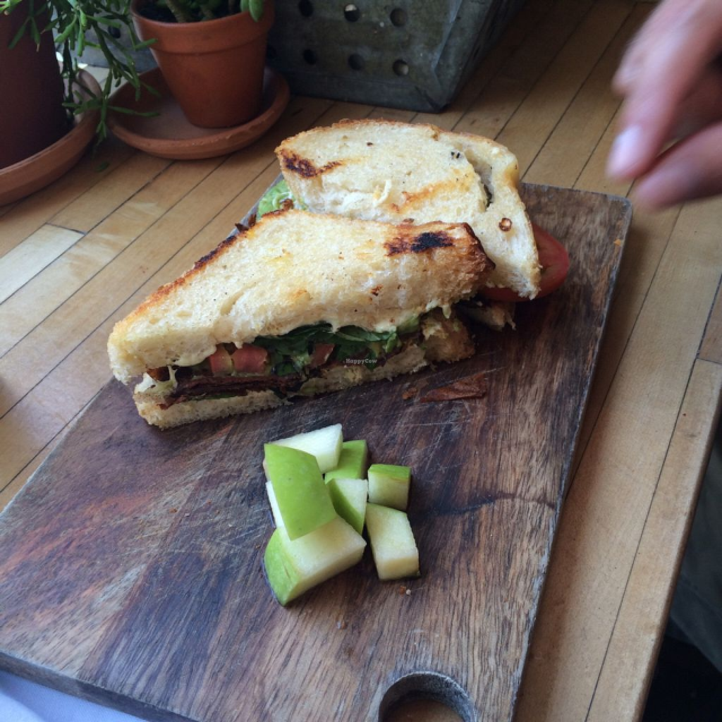 """Photo of The Butcher's Daughter - Nolita  by <a href=""""/members/profile/Tiptip"""">Tiptip</a> <br/>awesome vegan sandwich, go get it! <br/> September 14, 2015  - <a href='/contact/abuse/image/35872/117801'>Report</a>"""