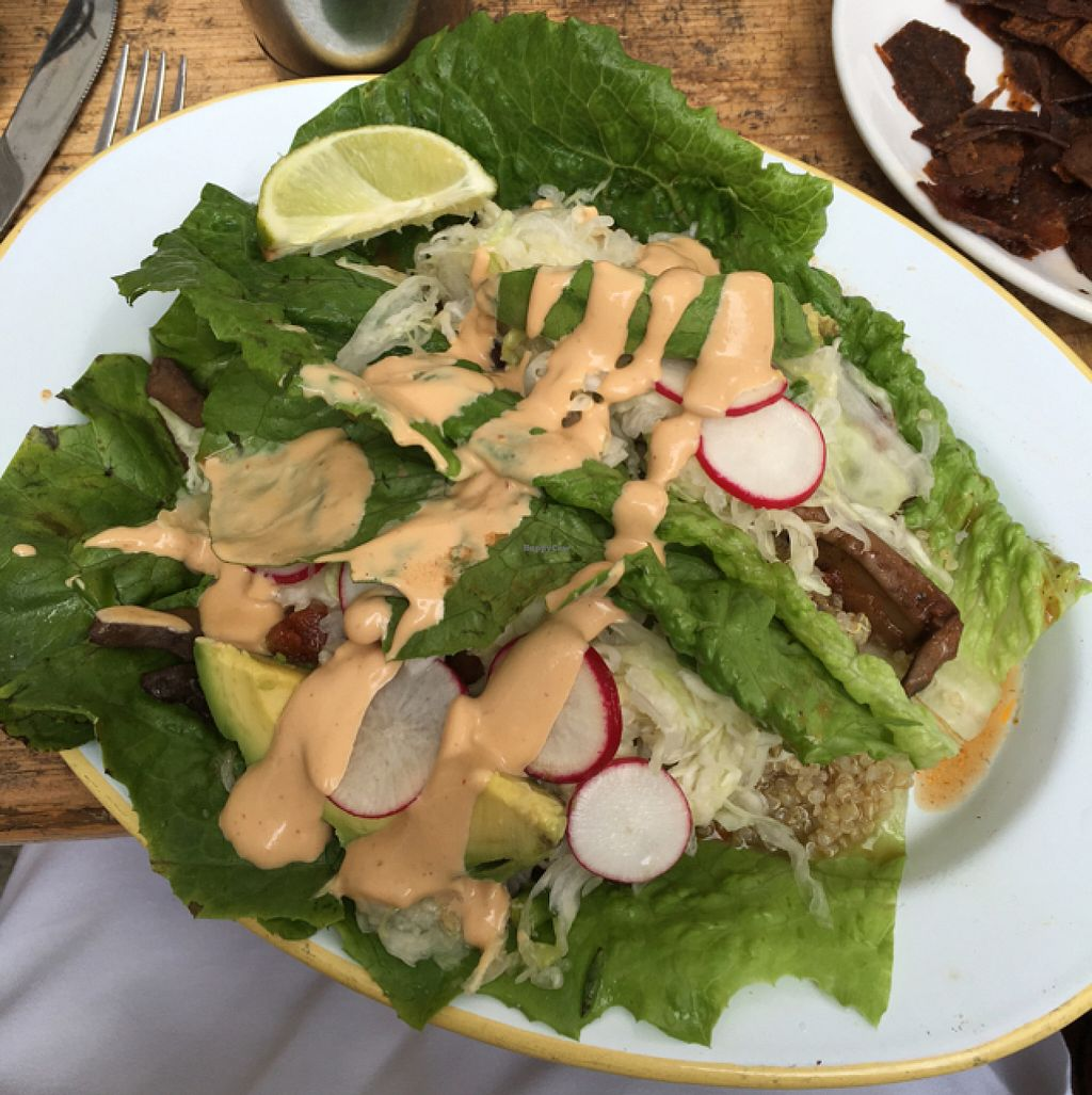 """Photo of The Butcher's Daughter - Nolita  by <a href=""""/members/profile/Annaelin"""">Annaelin</a> <br/>Tacos <br/> July 31, 2016  - <a href='/contact/abuse/image/35872/163978'>Report</a>"""