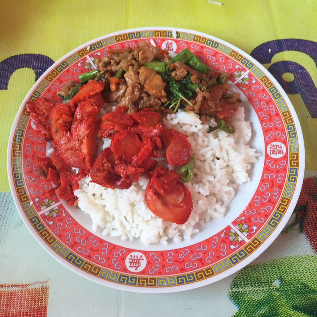 """Photo of Vegan Thai Food Stalls  by <a href=""""/members/profile/economydreams"""">economydreams</a> <br/>Mock meat with rice <br/> April 5, 2017  - <a href='/contact/abuse/image/35874/244933'>Report</a>"""