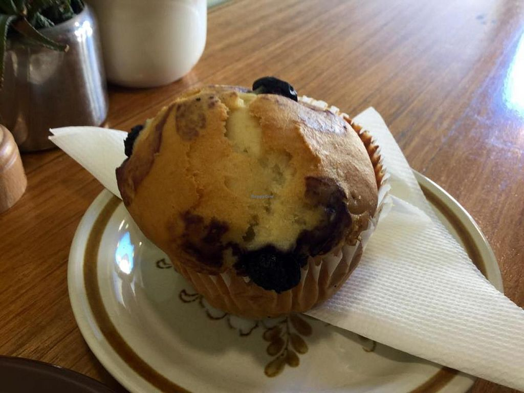 """Photo of Crumbs Organic Bakehouse  by <a href=""""/members/profile/Lea"""">Lea</a> <br/>Blueberry muffin <br/> February 10, 2015  - <a href='/contact/abuse/image/35875/92767'>Report</a>"""