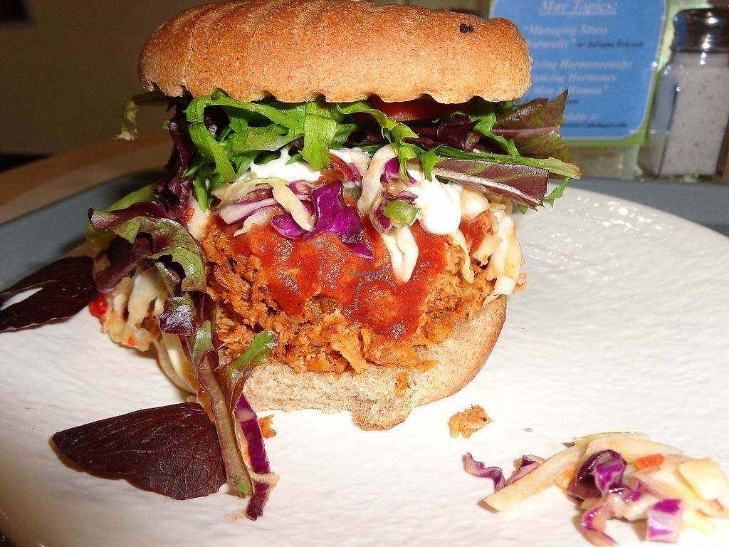 """Photo of Sunflower Cafe  by <a href=""""/members/profile/SarahBaker"""">SarahBaker</a> <br/>Traditional BBQ sandwich <br/> May 28, 2017  - <a href='/contact/abuse/image/35881/263453'>Report</a>"""