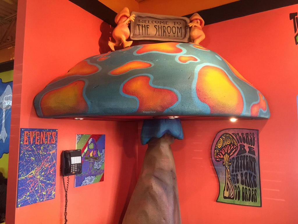 """Photo of Mellow Mushroom  by <a href=""""/members/profile/gwild"""">gwild</a> <br/>bright colors <br/> January 1, 2015  - <a href='/contact/abuse/image/35967/89230'>Report</a>"""