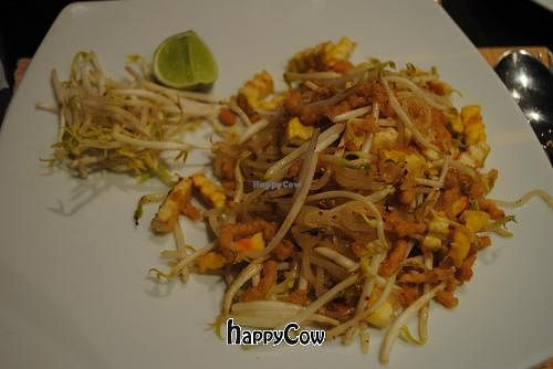 """Photo of Chongmas Thai Cuisine  by <a href=""""/members/profile/spiffysavannah"""">spiffysavannah</a> <br/>pad Thai with tofu and no egg <br/> January 3, 2013  - <a href='/contact/abuse/image/35977/42236'>Report</a>"""