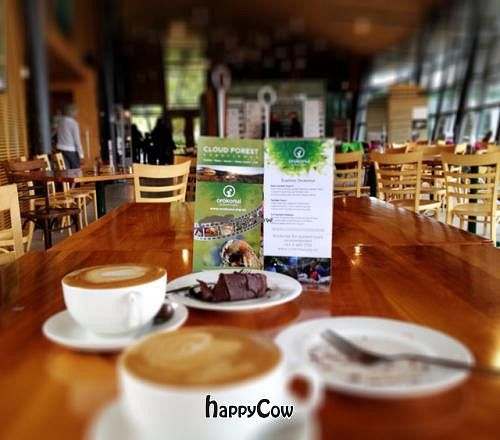 """Photo of Horopito Cafe  by <a href=""""/members/profile/Fontalamh"""">Fontalamh</a> <br/>Soya latte and vegan and GF chocolate cake <br/> December 30, 2012  - <a href='/contact/abuse/image/35982/42105'>Report</a>"""