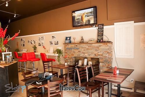 """Photo of Lazy Tulip Cafe  by <a href=""""/members/profile/lazytulipcafe"""">lazytulipcafe</a> <br/>Lazy Tulip Cafe <br/> January 3, 2013  - <a href='/contact/abuse/image/36036/42235'>Report</a>"""