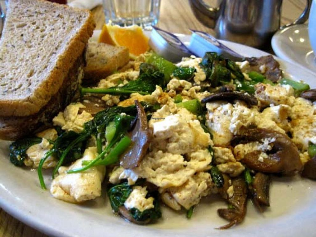 """Photo of Trident Bookstore and Cafe  by <a href=""""/members/profile/Babette"""">Babette</a> <br/>Tofu Scramble <br/> February 17, 2014  - <a href='/contact/abuse/image/36072/64440'>Report</a>"""