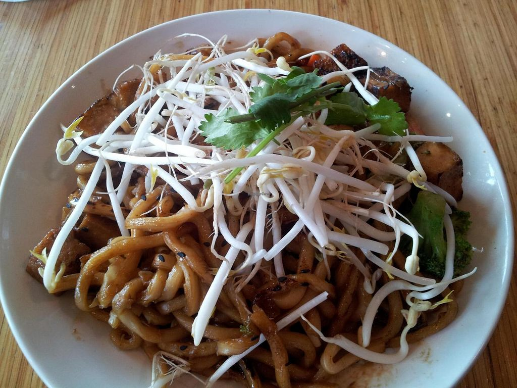 Photo of Noodles and Company - Sugarhouse  by Navegante <br/>Japanese Pan Noodles with Tofu 04-03-2014 <br/> April 3, 2014  - <a href='/contact/abuse/image/36104/66989'>Report</a>