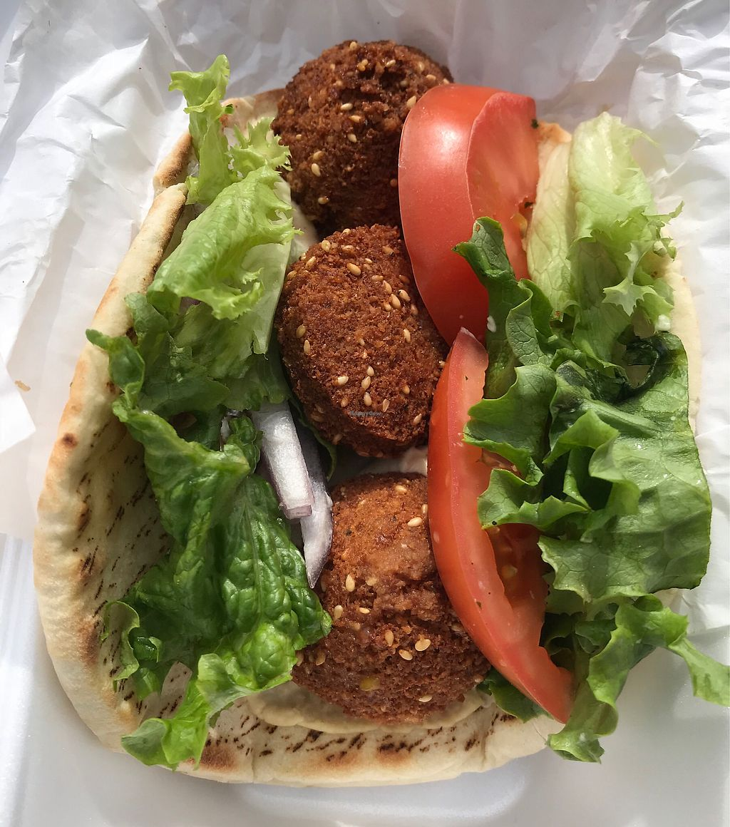 """Photo of Zayna Mediterranean  by <a href=""""/members/profile/OldPuebloVegan"""">OldPuebloVegan</a> <br/>Falafel Sandwich comes w side of Zayna Fries or Salad.  <br/> March 16, 2018  - <a href='/contact/abuse/image/36129/371538'>Report</a>"""