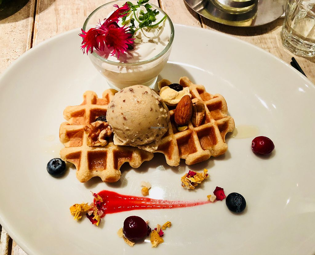 "Photo of Ain Soph.Journey  by <a href=""/members/profile/EmmaJ"">EmmaJ</a> <br/>Waffles with ice cream and vegan whipped cream  <br/> April 20, 2018  - <a href='/contact/abuse/image/36193/388565'>Report</a>"