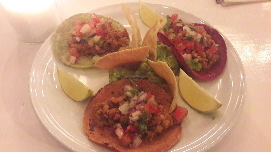 """Photo of La Hoja Verde  by <a href=""""/members/profile/AshlynZuideveld"""">AshlynZuideveld</a> <br/>bland vegan tacos <br/> August 19, 2017  - <a href='/contact/abuse/image/36309/294402'>Report</a>"""