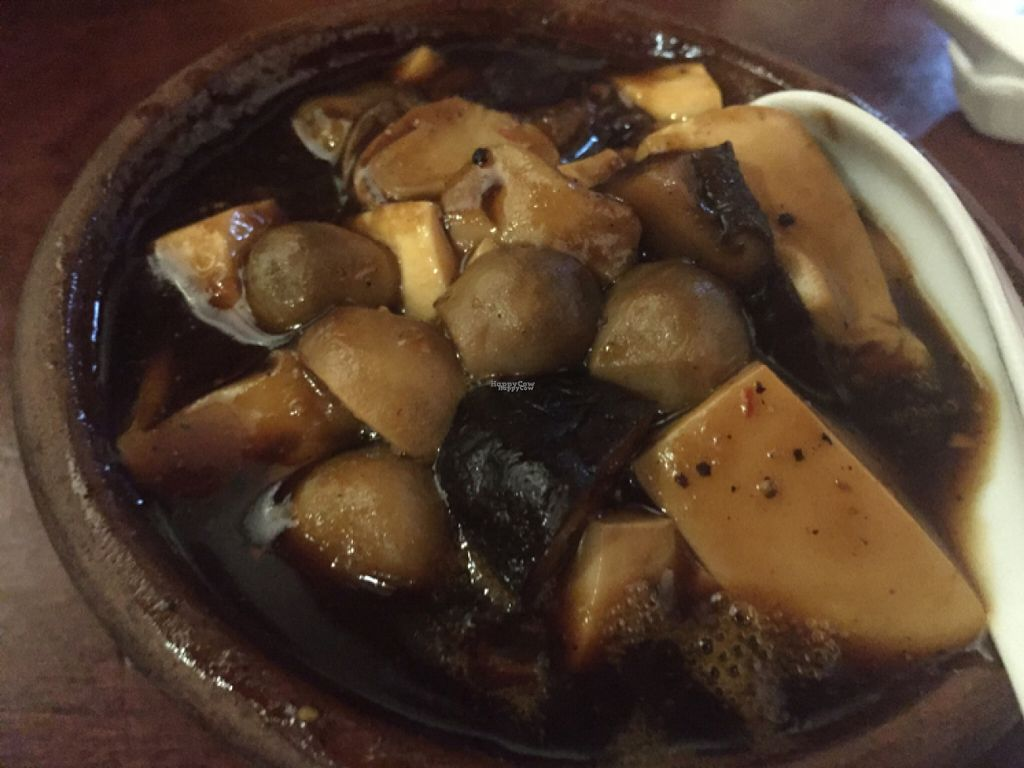 """Photo of Hum Vegetarian - District 3  by <a href=""""/members/profile/SusanRoberts"""">SusanRoberts</a> <br/>mushroom and tofu stew, vegan <br/> August 1, 2016  - <a href='/contact/abuse/image/36320/164120'>Report</a>"""