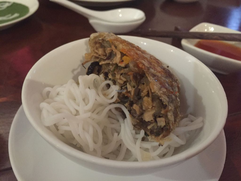 """Photo of Hum Vegetarian - District 3  by <a href=""""/members/profile/SusanRoberts"""">SusanRoberts</a> <br/>square spring rolls, vegan <br/> August 1, 2016  - <a href='/contact/abuse/image/36320/164121'>Report</a>"""